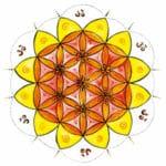 Meditation im Sakralchakra